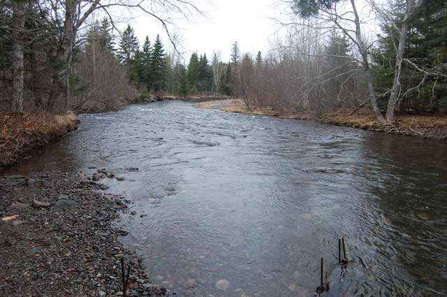 downstream2010